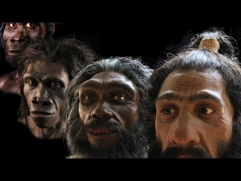 Molding an identity for dinosaurs and early humans from the study of fossils