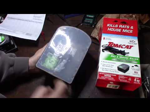 Tomcat Mouse And Rat Bait Station Trap Review Part 1