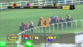 20151004 Singapore Horse Race Results Race 1
