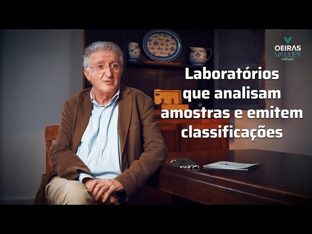 Oeiras Valley | Entrevista ao Prof. Miguel Miranda (Presidente IPMA) | Parte I