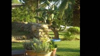 IBIZA Espagne -  VILLA LUXE IBIZA - Vacances Ibiza