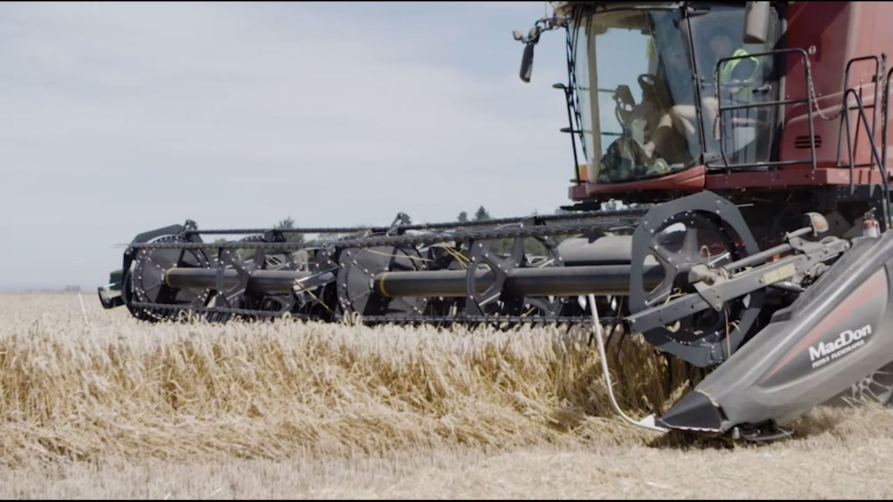 Bayer supports NZ farming couple to break wheat world record
