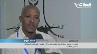 السودان يواجه زحف الرمال بخطة لغرس 10 ملايين شجرة في السنوات الخمس المقبلة