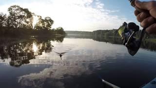 Рыбалка с лодки со спиннингом.В поисках зубастой Сары Абрамовны.