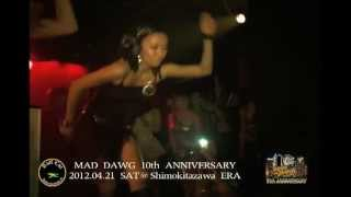 DANCEHALL MADDIEZ by MOMO/HARDCORE J/MISHULAN - MAD DAWG INTERNATIONAL 10th ANNIVERSARY