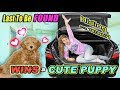 Last To Be Found Wins CUTE Baby PUPPY!! Tannerites Hide And Seek GAME!