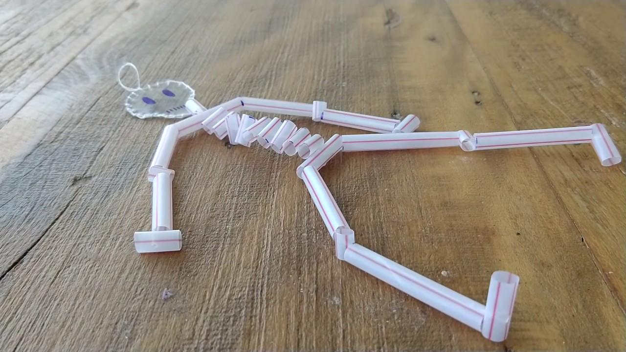 Como fazer um esqueleto com canudos youtube for Como criar peces para consumo humano