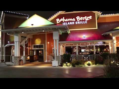 Bahama Breeze Virginia Beach Mannequin Challenge