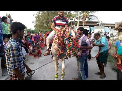Hyderabadi dulah in ganikapudi village.