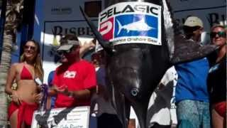 CatchStat | 2012 Bisbee's Black & Blue Marlin Tournament Fish #14449