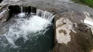 Рыбалка на реке Сочи Мелкий подуст