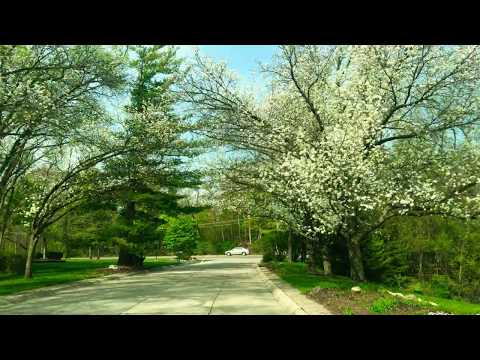 Driving to West Bloomfield, Michigan from Beverly Hills,  Michigan
