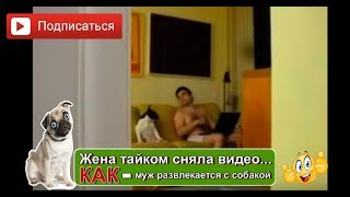 Жена тайком сняла видео как муж танцует с собакой(, 2014-09-16T10:24:09.000Z)