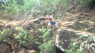 Quien dijo que los manatíes no saltan de un risco.... :)