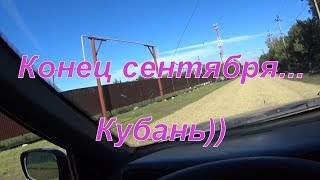 Конец Сентября.  Кубань))