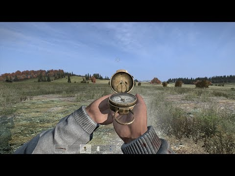 DayZ video offers eight and a half minutes of raw footage