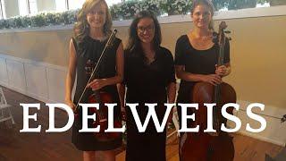 Edelweiss - violin/cello/piano trio