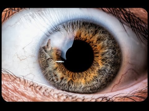 Get Gray Yellow Hazel Eyes Fast Subliminals Frequencies