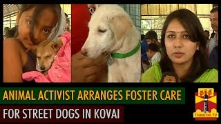 Animal Activist arranges Foster Care for Street Dogs in Kovai