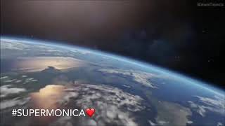Видео на День Рождения Моники от котят❤