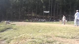 Tapeball khaksar malinga bowlingtaxila and haripur