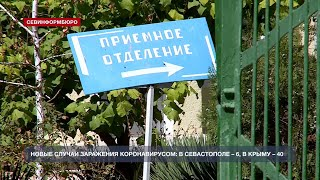 В Севастополе семилетний ребёнок подхватил коронавирус