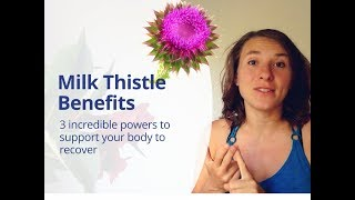 Milk Thistle Benefits & Silymarin - How St Mary's Thistle Can Help You Heal Naturally