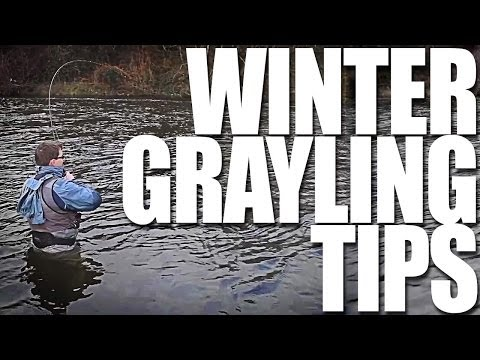 Fishing For Grayling On The Dee - Fishing Britain Shorts