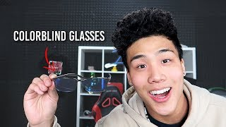 These Glasses Changed My Life...