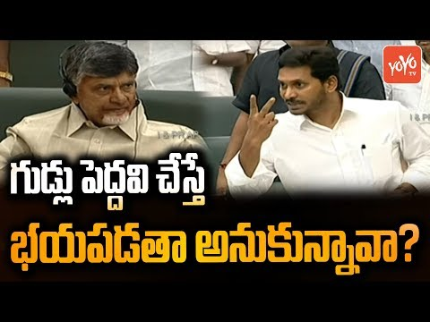 AP CM Jagan Serious Warning to Chandrababu Naidu Behaviour in AP Assembly | TDP Vs YSRCP | YOYO TV