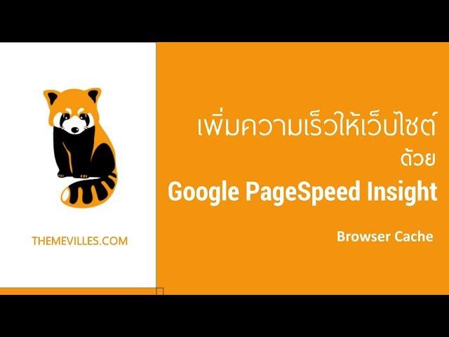ฺBrowser Cache - Google Page Speed Insight