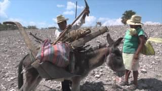 Download el cultivo tradicional del maiz mes de mayo, parte 2 Mp3 and Videos