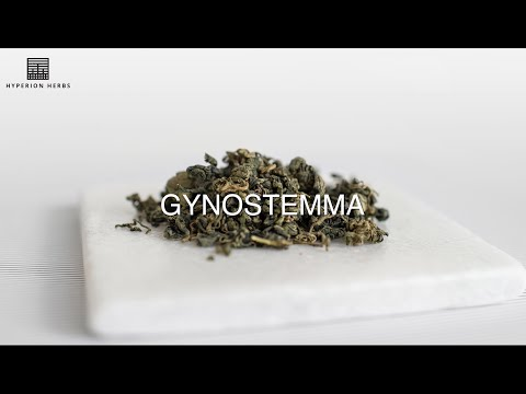 The Benefits of Organic Gynostemma | Hyperion Herbs
