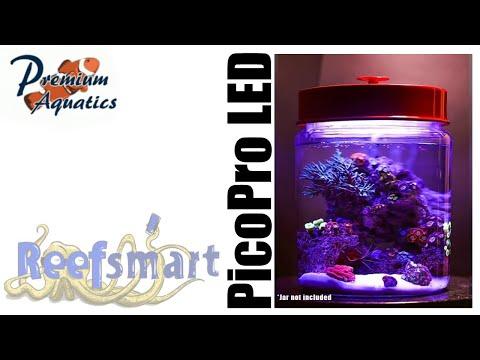 Pico Reef Tank Lighting | PicoPro LED