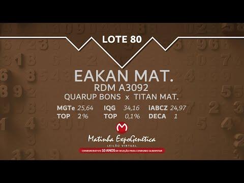 LOTE 80 MATINHA EXPOGENÉTICA 2021