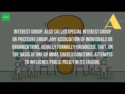 Who Are The Interest Groups?