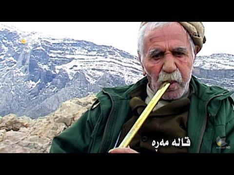 قالە مەڕە ناسکۆڵەی نازەنین Qala Mara خۆشترین شمشاڵی کوردی: تکایە سابسکرایبتان لە بیر نە چێت هاورێیانی ئازیز . Please Subscribe  Qadir Abdullahzada(23 October 1925 – 21 May 2009) also known as Qale Mere (Sorani Kurdish: قالەمەڕە) or Mame Qale (Sorani Kurdish: مامه قاله) born in village of Kulice (pron: Kulija; in Sorani Kurdish: كولیجه) in northwestern Iran, is one of the best known Kurdish traditional musicians. He played shimshal/ney (long flute), a Kurdish traditional music instrument. He started to play shimshal (Ney) as a young and homeless man aiming to earn his daily bread. He played on the streets for an unknown number of years until he was an old man and was filmed by a journalist which was published as a documentary. He was known for the long tones he could create and to play for hours without holding breaks.  After a long struggle with disease, he died at the age of 84 in the Iranian city of Bokan. On late Saturday May 22, 2009 his body was buried in Nalashkena grave yard beside the tomb of the great Kurdish singerHesen Zirek قادر عەبدوڵڵازادەناسراو بەقالەمەڕەھونەرمەندی  شمشاڵژەن ساڵی١٩٢٥(١ی سەرماوەزی ١٣٠٤کۆچیی ھەتاوی) لە گوندیکولیجەسەر بەبۆکانھاتە دنیا. ناوی باوکی ناوی محەمەد بووە و لە لایەن شێخ محەمەد شێخی بورھان لە ناوچەیموکریان، کە قادری زۆری خۆش دەویست، لەبەر ئەوەی کە مێرمنداڵێکی زۆر ھێدی و ئارام بووە نازناوی قالەمەڕەی پێبەخشرا. لە ساڵانی پەنجاکان و ساڵانی دواتر لە ناوەندەکانی رادیۆ و تەلەفیزیۆنی کرماشان، سنە، تاران، مەھاباد و ورمێ بە دەنگی سحراوی و ئاسمانی و بەربڵاوی شمشاڵەکەی چەندین پارچە موزیکی جوان و رەسەنی پێشکەش کرد و ھونەری موزیکی کوردی بە شکۆیەکی بێ وێنەوە ھێنایە گۆڕەپانی ھونەرییەوە. سەرناوشمشال ژەن.  دواتر بۆ ماوەی چەندین ساڵ لە گەڵ ھونەرمەندی گۆرانیبێژی بەتوانای کوردحەسەن زیرەکھاوکاری ھونەری کرد و لە پێشکەش کردنی گۆرانییەکانیدا بە ئامێری شمشاڵ یارمەتی دەدا. قالەمەڕە باوکی نەبینیووە و دایکیشی لە تەمەنی ٦ ساڵانیدا کۆچی دوایی دەکا. ھەر وەک خۆی دەڵێ تەواوی ژیانی بە نارەحەتی و برسێتی و چارەڕشی تێپەڕ کردووە. ساڵی ١٩٤٥-١٩٤٦ پەیوەندی بەکۆماری مەھابا
