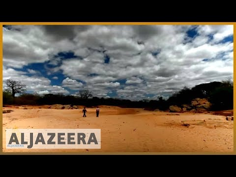 earthrise - Fighting desertification in Kenya & the remakery