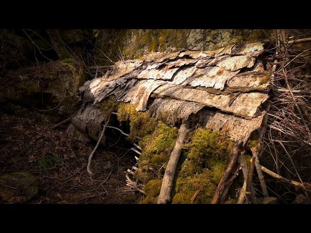 MAKING and COOKING WILD LEEK SOUP at a NATURAL DEBRIS HUT in the FOREST with 2 DOGS