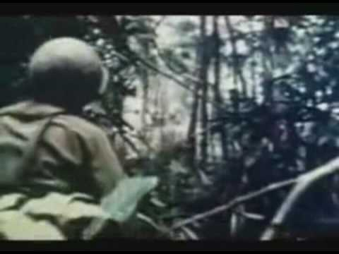 vietnam war and creedence clearwater revival [d g] chords for creedence clearwater revival - bad moon rising vietnam with capo tuner, play along with guitar, piano & ukulele.