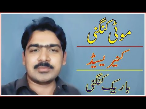 kangani china kneri seed k rates kia hen   waseem zia   urdu hindi