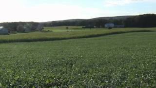Grain Farm For Sale near State College PA - The Land and Soils
