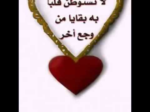 سامي يوسف أمي سامحيني نغمة | FunnyCat TV