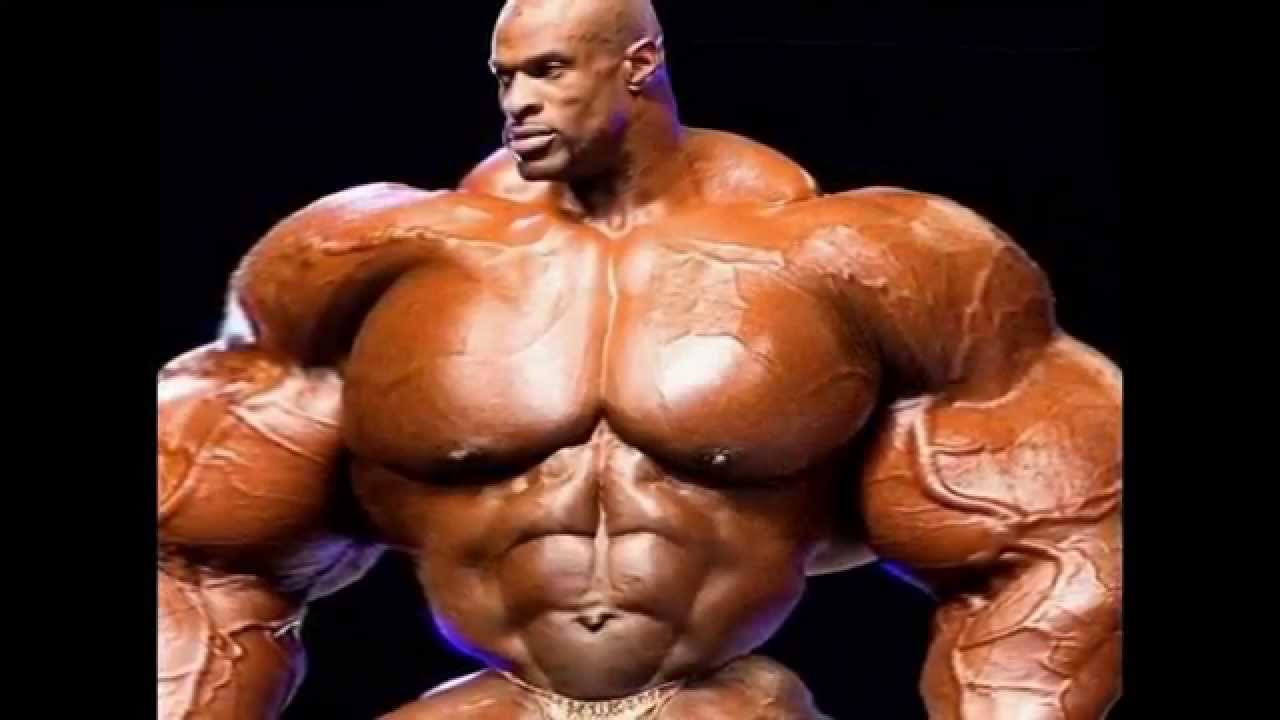 muscle body - youtube, Muscles