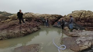 一块南极虾投水坑为诱饵,隔天全家人跋山涉水来抓鱼,坑底鱼货乱跳真不少,一条滋补野货有几米长,现抓现煮特别的鲜美.