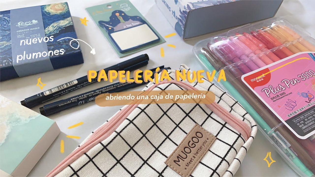 abriendo una caja de papelería ☁️ ft piggypaper