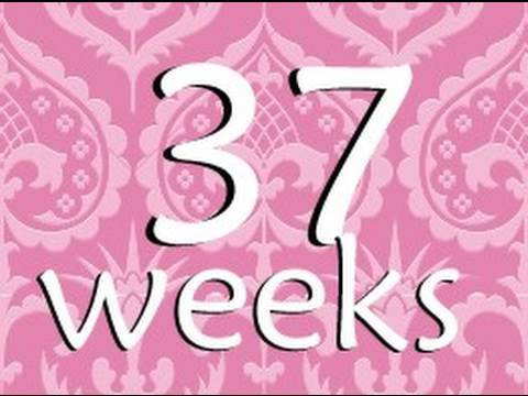 37 Week Pregnancy Update - FULL TERM!