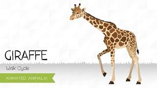 Animated Animalia: Giraffe Walk Cycle