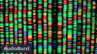 Graham Hancock Discusses The Mystery Of DNA