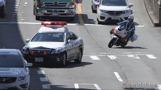 違反車両は逃がさない!青バイ・パトカー・白バイの交通取り締まり!